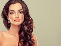 Brunette with long hair. Beautiful model brunette with long curled hair Royalty Free Stock Photos