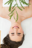 Brunette lying with leaves in beauty salon Stock Photography