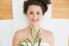Brunette lying with leaves in beauty salon Royalty Free Stock Photo