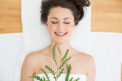 Brunette lying with leaves in beauty salon Royalty Free Stock Photography