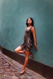 Brunette magnífico en actitud sexual Fotografía de archivo libre de regalías