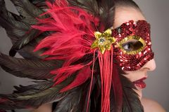 Brunette in mask. Mysterious brunette wearing carnival red mask on her face Stock Images