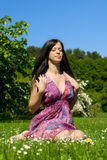 Brunette on the meadow. Beautiful young woman sitting on the grass Royalty Free Stock Images