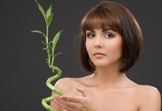 Brunette mit Bambus über Grau Lizenzfreies Stockfoto