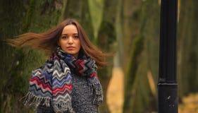Brunette mit dem Fliegenhaar, das gegen den Hintergrund von Herbstbäumen aufwirft Lizenzfreie Stockfotografie