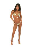 Brunette model in a bikini. Sexy brunette model in a bikini isolated over white Royalty Free Stock Photography