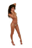 Brunette model in a bikini. Sexy brunette model in a bikini isolated over white Stock Photo