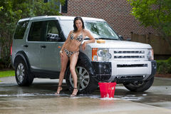 Brunette Model Washing Car Stock Photography