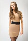 Brunette novo elegante lindo. foto de stock