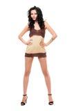 Brunette novo encantador em um vestido Fotografia de Stock Royalty Free