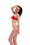 Brunette prenant la pose de mode Image libre de droits