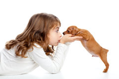 Brunette profile girl with dog puppy mini pinscher Stock Images