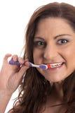 Brunette que aplica sus dientes con brocha Imagen de archivo