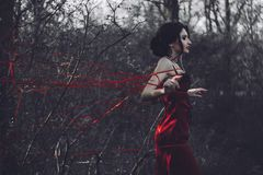 Brunette in a red dress in the woods stock photos