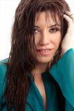 Brunette-Schönheit stockbild