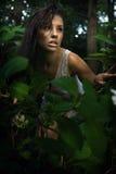 Brunette sensible posant dans une forêt Image stock