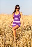 Brunette sexy girl in short dress at wheat field Stock Image