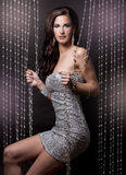Brunette and silver dress Stock Images