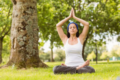 Brunette sitting in lotus pose on grass Royalty Free Stock Photography