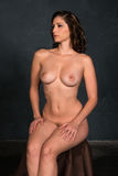 Brunette sitting nude Stock Images