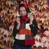 Brunette sonriente en bufanda del otoño Imagenes de archivo
