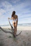 Brunette standing on broken tree showing her back Royalty Free Stock Photo