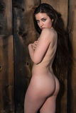 Brunette standing nude Stock Images