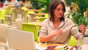 Brunette student studying while having lunch in canteen Stock Photography