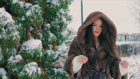 Brunette stylish girl near Snow covered trees in winter, in brown fur coat slow motion. Close-up of brunette stylish girl with bright makeup, near Snow covered stock video