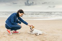 Dog and woman on seashore royalty free stock photos