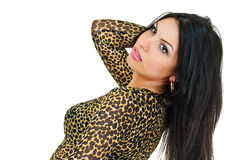 Brunette in tiger tone Stock Image