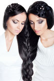 Brunette twins Royalty Free Stock Photos