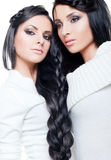 Brunette twins Royalty Free Stock Image
