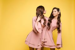 Happy sisters in pink dresses smiling and standing together. Brunette twins with long hair in pink dresses posing at camera on yellow studio background. Happy royalty free stock image