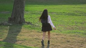 Brunette walks on grassy meadow in slow mo. Model has nice legs and short skirt. stock footage