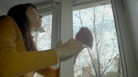 The brunette washes the window on a spring day. stock video