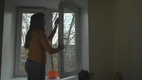 The brunette washes the window on a spring day. stock footage
