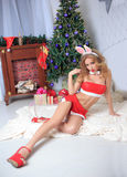 Brunette wearing sexy christmas lingerie . bunny Royalty Free Stock Images