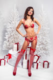 Brunette wearing sexy christmas lingerie indoors Royalty Free Stock Images
