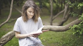 A brunette white girl is reading a book in the park. A serious brunette white girl dressed in a gray shirt is reading a book in the park, is holding a notebook Stock Images