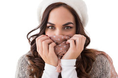Brunette in winter clothes holding her scarf Stock Photos