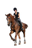 Brunette woman cantering on chestnut horse isolated on white Royalty Free Stock Image