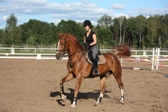 Brunette woman cantering on chestnut horse Stock Images
