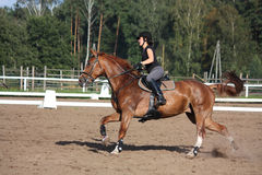 Brunette woman cantering on chestnut horse Royalty Free Stock Photography