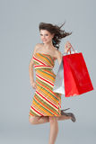 Brunette woman carrying shopping bags Stock Photos