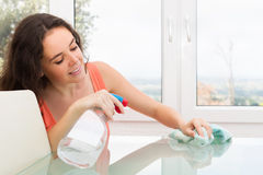 Brunette woman cleaning  furniture Royalty Free Stock Photo