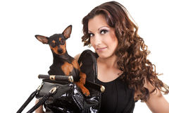 Brunette woman with dog, Royalty Free Stock Photos