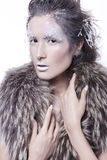 Brunette woman in fur with creative make up in winter style with Stock Images