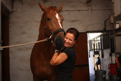 Brunette woman grooming brown horse for the riding Stock Images