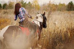 Brunette Woman on horseback Stock Images